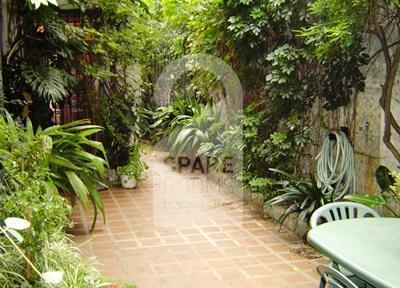 THE PATIO at the house in Palermo